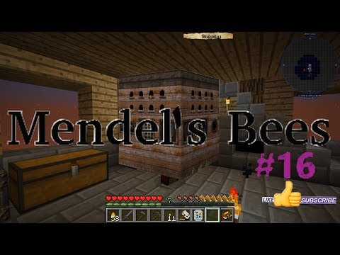 Dirty Bees Dirty Minds - Mendel's Bees Ep. 16 on Minecraft 1.12
