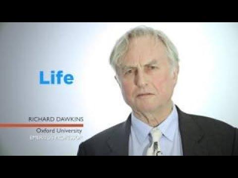 BIOLOGY - In The Beginning - Richard Dawkins