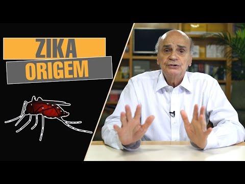 Zika virus | Origem
