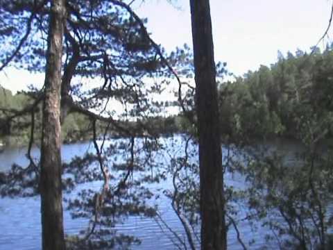 Bushcraft in Sweden