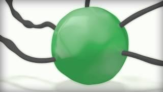 Den gröna bubblan av Per Wimmer