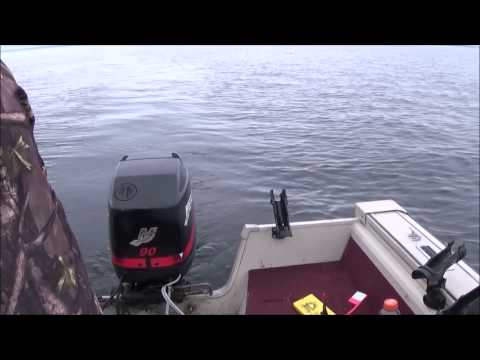 Green Bay Aim Prefishing, Huge Walleyes