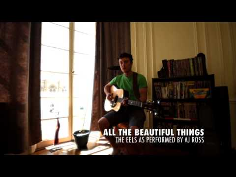 ALL THE BEAUTIFUL THINGS –EELS