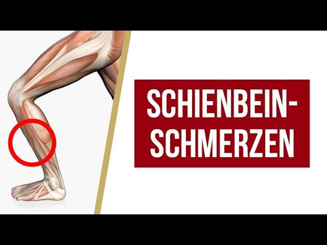 Schienbeinschmerzen | Übungen + Tipps von Liebscher & Bracht | Faszienrolle, Engpaassdehnungen