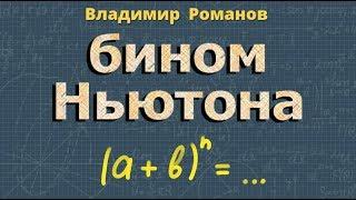 алгебра БИНОМ Ньютона 10 и 11 класс видеоурок