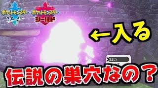 【驚愕】ずっと何もいなかった謎の巣穴にポケモンを出現させる方法!【ポケモン剣盾/ポケモンソードシールド】