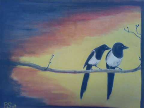 Joy two Magpies