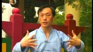 袁康就博士《養生修談》之太極站樁功 2004 Taichi Zhan Zhuang Gong by Dr. HC Yuen