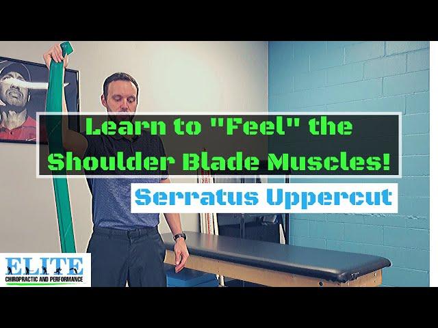 How to Feel the Shoulder Blade Muscles | Serratus Uppercuts