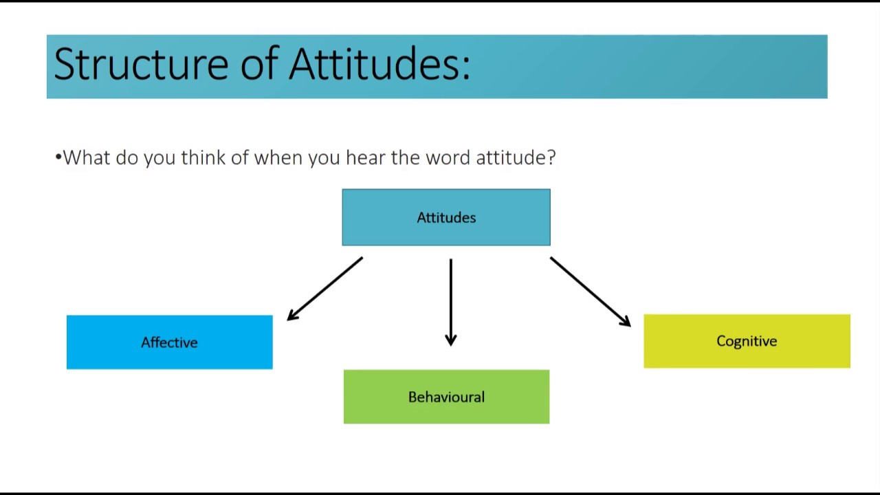 Social Cognition  Structure Of Attitudes