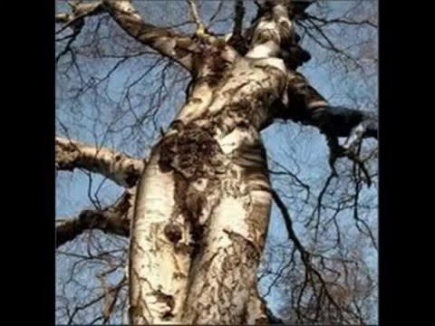 صور عجيبة وغريبة عن الطبيعة سبحان الله Youtube Youtube
