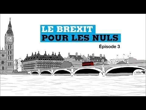 Brexit pour les Nuls, Ep 3 : C'est quoi le backstop ?