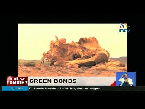 CBK finalizing guidelines for banks to float green bonds