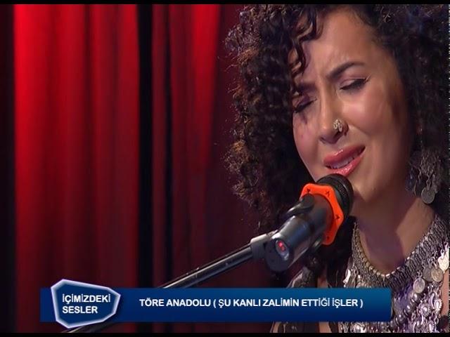 Ali Rıza Erdoğan İle İçimizdeki Sesler // Töre Anadolu (17 Kasım 2019)
