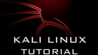 HOWTO | KALI LINUX AUF DEM PC INSTALLIEREN + GRUB 2 FIX | GERMAN | ACER PREDATOR G3!