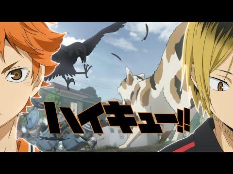 【MAD】ハイキュー!!~ゴミ捨て場の決戦~「烏野VS音駒」