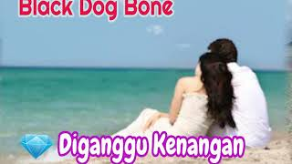 Black Dog Bone◇◇Diganggu Kenangan