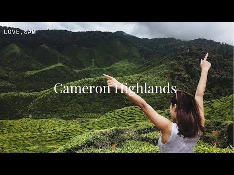 Travel VLOG | Things To Do: Cameron Highlands, Malaysia | Life Of Sam