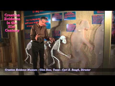 Failed Evolutionary Pre-Human Candidates: Episode 4 - Ramapithecus