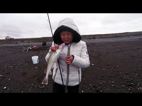 НАВАГА 2020 Открыли сезон на Охотском море