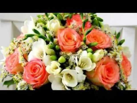 Луковичные цветы купить ➩ интернет-магазин sezon голландские луковицы ✓ выгодные цены ✓ доставка почтой по украине ☎ (097)823-74-44, (063)823 -74-44, (050)823-74-44.