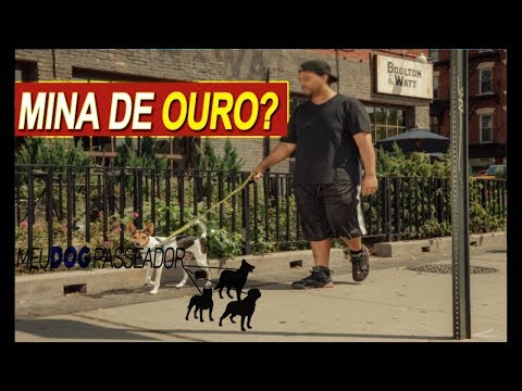 CACHORRO QUE PUXA A GUIA - Dica rápida from YouTube · Duration:  3 minutes 46 seconds