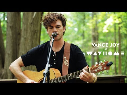 Vance Joy performs