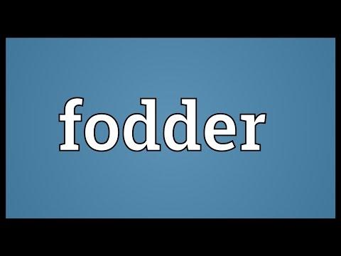 Fodder Meaning