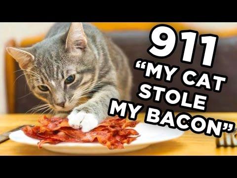 10 Dumbest 911 Calls