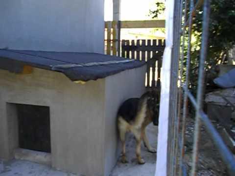 Cuccia cani youtube for Costruire box per cani