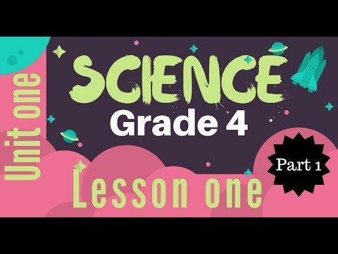 Grade 4 | Unit 1 - Lesson 1 - Part 1 - Measuring Tools