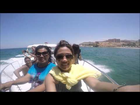 Oman Dolphin Watching at Marina Bandar Al Rowdha
