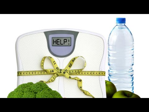 ¿Cuál es la Mejor Dieta para Bajar de Peso Rápido y Sin Efecto Rebote?