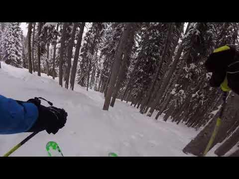 JBThree.com Snow Skiing Aspen 2018 - JB3 Highland Deep Temerity Trees