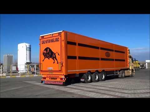 livestock trailer animal carrier hayvan taşıma dorsesi