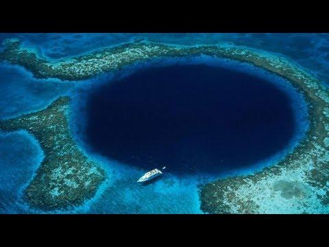 পৃথিবীর সমুদ্রতলের সাতটি বিস্ময় | Seven Wonders of the Underwater World | Underwater Wonders