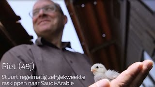 Video Piet | Klantenverhalen AVEVE download MP3, 3GP, MP4, WEBM, AVI, FLV Agustus 2018