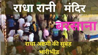 Live Morning of Radha Rani Temple :: Barsana India