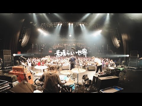 KOTORI 「素晴らしい世界」Official Live Video