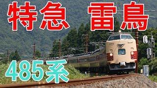 特急 雷鳥 485系電車