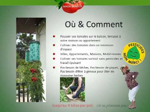 Magic tomate pot pour planter des tomates sans jardin - Planter tomates cerises en pot ...
