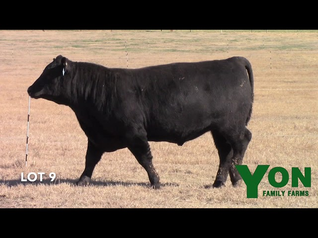Yon Family Farms Lot 9