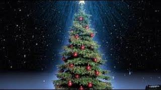 Лайфхак как сделать настоящую новогоднюю елку своими руками