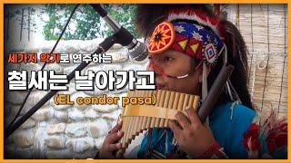 EL condor pasa (철새는 날아가고)- 충주무술축제행사- 세가지 악기로 연주