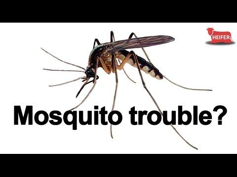 HEIFER Mosquito Repellent
