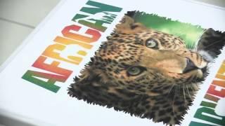 Печать футболки на принтере Epson SureColor SC F2000(, 2014-10-14T09:32:48.000Z)