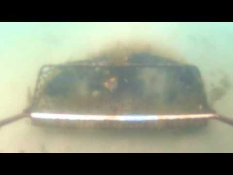 Scallop Dredge Camera Test