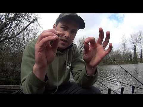 Carp Fishing Fendrod- Gold Mining (Blog 5)