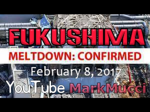 ☢ Feb 2017 ☢ FUKUSHIMA ☢ Excellent up to date coverage by Steve Quayle