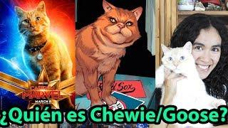 ¿Quién es el gato de Capitana Marvel? ¿Quién es Chewie / Goose? ¿Quién es el gato de Carol Danvers?